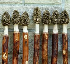 Morel Mushroom Hickory Hiking Stick