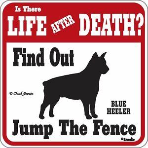 Blue Heeler Life After Death Funny Warning Dog Sign