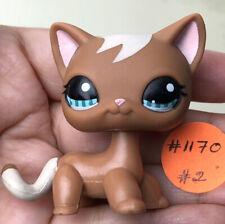 💖🐱Authentic Littlest Pet Shop #1170 Shorthair Cat +1 Random LPS Swirl Brown