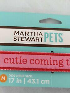 Martha Stewart Pets Buckle Dog Collar Size Medium? 17 inch dog neck size!