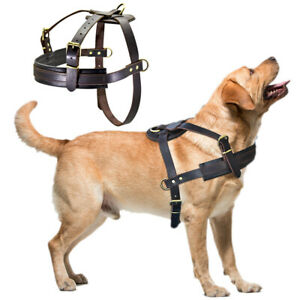 Best Genuine Leather Pet Dog Harness Large Breed Training Heavy Duty Rottweiler