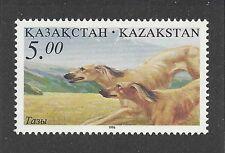 Dog Art Body Study Portrait Postage Stamp Saluki Coursing Kazakhstan 1996 Mnh