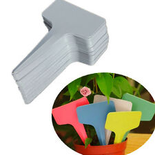 100pcs 6 x10cm Plastic Plant Pot T-type Tags Markers Nursery Garden Labels Blank
