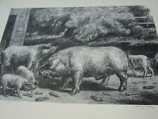 Hogs Near a Corncrib Harry Wickey Vintage Print Lithograph 30155