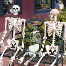 Human Skeleton Bones Real Life Size Hanging Halloween Props Decor House HQ DIY