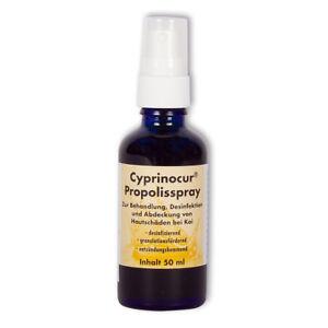 Cyprinocur Propolis Spray 50ml Wundversiegelung Wundabdeckung Desinfizierend Koi