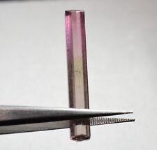 Tourmaline bicolore terminée 7,15 carats  Natural terminated bicolor tourmaline