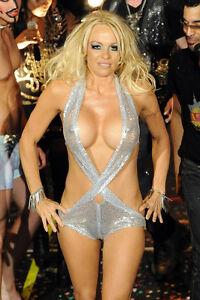 Pamela Anderson Stunning Sexy Skimpy Silver Costume 11x17 Mini Poster