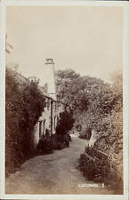 Luccombe near Selworthy # 8 by H.H.Hole, Williton.