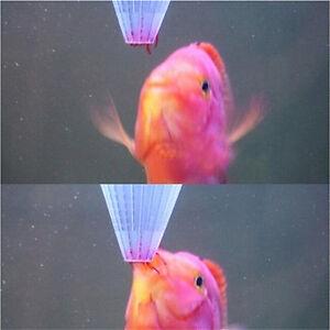 4pcs Aquarium Basket Feeder Fish Food Live Worm Bloodworm Cone Brineshrimp T_hg