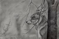 FOX pencil / graphite Giclee print A3 signed by UK artist, limited edition
