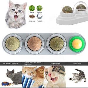 Nutrition Teeth Cleaning Chew Ball Cat Snacks Molar Cat Toys Catnip Balls