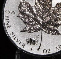 2017 PANDA  Privy Silver Maple Leaf Canada  1 oz 9999 pure