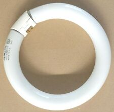 Neon Circolare Philips Diam. 22cm 22W 4000°k 1250lm