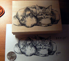 Dog and cat friends  Rubber stamp WM P20