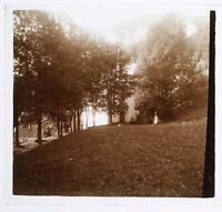 Paesaggio Sottotipo Legno c1930 Foto Placca Da Lente Stereo Vintage VR16L6n1