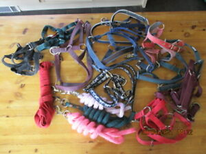 job lot of headcollars and lead ropes  Mainly cob size