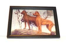 "Great Dane Trio Reverse Printed 12"" x 8 1/2"" Wooden Framed Glass Print,U.S.A."