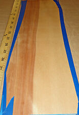 """Red Birch wood veneer 6"""" x 17"""" raw no backing 1/42"""" thickness flexible roll"""