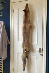 Large Vintage Fox Pelt