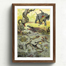 Multi-Colour Vintage Animals Art Prints