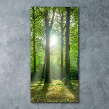 Wand-Bild Kunstdruck aus Hart-Glas Hochformat 60x120 Sonne im Wald
