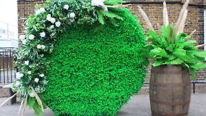 Round/ Circular eucalyptus Grasswall Backdrop. Vintage wedding decorations