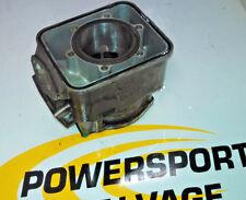 97 98 99 Skidoo Snowmobile Cylinder MXZ Formula L/C 500 Standard Bore 420923147