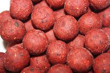 RobinRed Garlic Boilies 20mm 1kg  (Boilies POPUP Karpfen Dips Futter (7,99€/kg))