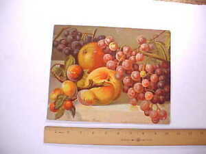 1868 CHROMOLITHO WALL PRINT BY JOSEPH HOOVER PHILADELPHIA AMERICAN GRAPES