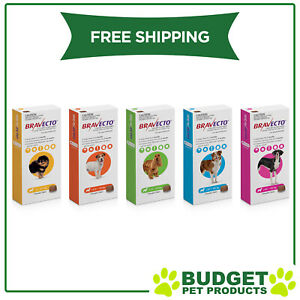 Bravecto 1 Chew For Dogs