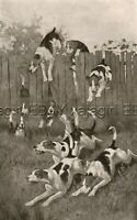 DOG Foxhounds Jump Fence on Hunt, Huge Folio-Sized Antique 1880s Print