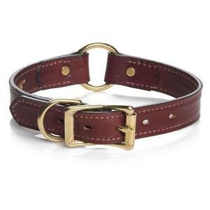Wide Leather Feature Dog Collar