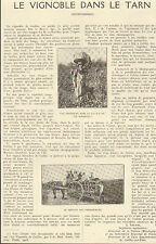 81 LE VIGNOBLE DANS LE TARN ARTICLE DE PRESSE PAR J. VINCENS MAIRE 1923