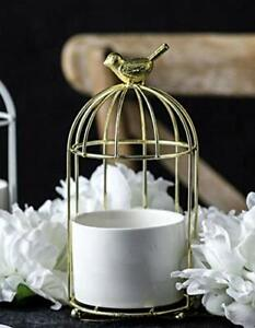 Metal Bird Cage Flower Stand and Pot, for Succulents, Cactus and Small Plants