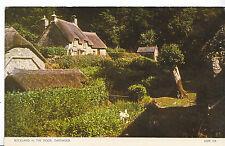 Devon Postcard - Buckland in The Moor - Dartmoor - Showing Houses   Q520