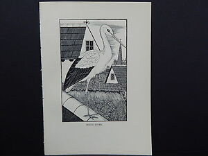 BIRDS, ERIC FITCH DAGLISH, Engraving, c. 1948 White Stork #32