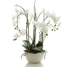 'FLORABELLE' NEW Artificial White Orchid Arrangement in White Pot with Silver