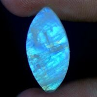 11.40Cts.100% Natural Blue Fire Rainbow Moonstone Marquise Cabochon Gemstone 95