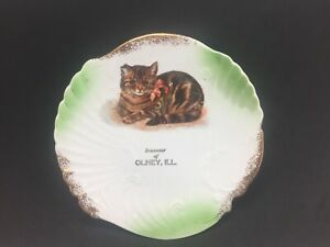 "Souvenir Olney Illinois Store Advertising Plate Dish Tabby Cat 7 1/2"" Antique"