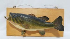"""Vintage Taxidermy Largemouth Bass Approx. 21"""""""