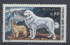 MONACO - 1977 - Esposizione canina internazionale di Monaco