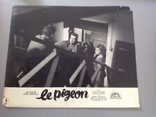 PHOTO D'EXPLOITATION (LOBBY CARD) : LE PIGEON (Gassman, Mastroianni...)