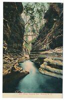Elfin Gorge Watkins Glen State Park Watkins Glen New York NY Creek Postcard