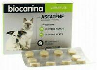 BIOCANINA Ascatène vermifuge pour chien et chat + 2kg boîte de 10 comprimés