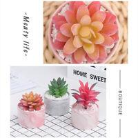 Artificial Flowers with Ceramic Pot Indoor Succulent Plant Decor Bonsai Home Art