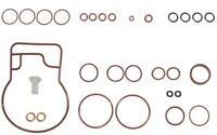 joints pompe à injection EPIC DELPHI / LUCAS RENAULT CLIO MEGANE KANGOO / FIAT