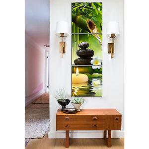 3pcs Framed Bamboo Green Nature Art Oil Canvas Print massage shop Wall Decor