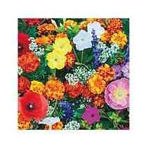 WildflowerDeer Resistant Mix 5,000 seed Jumbo Packs. *Same Day Shipping*