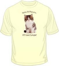 Take a Picture- Kitten T Shirt You Choose Style, Size, Color Up to 4XL 10104